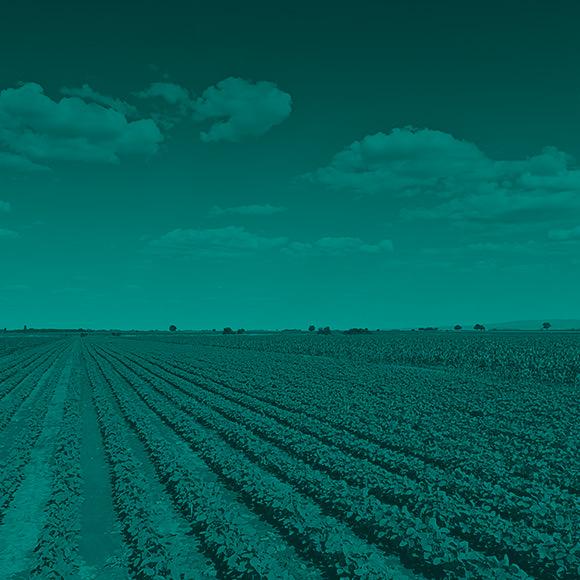 Rozwiązania dla rolnictwa